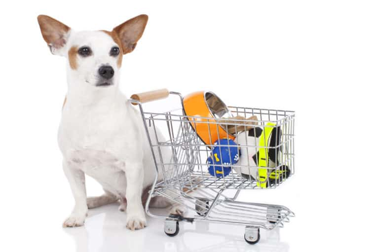 Tips to Save On Pet Products